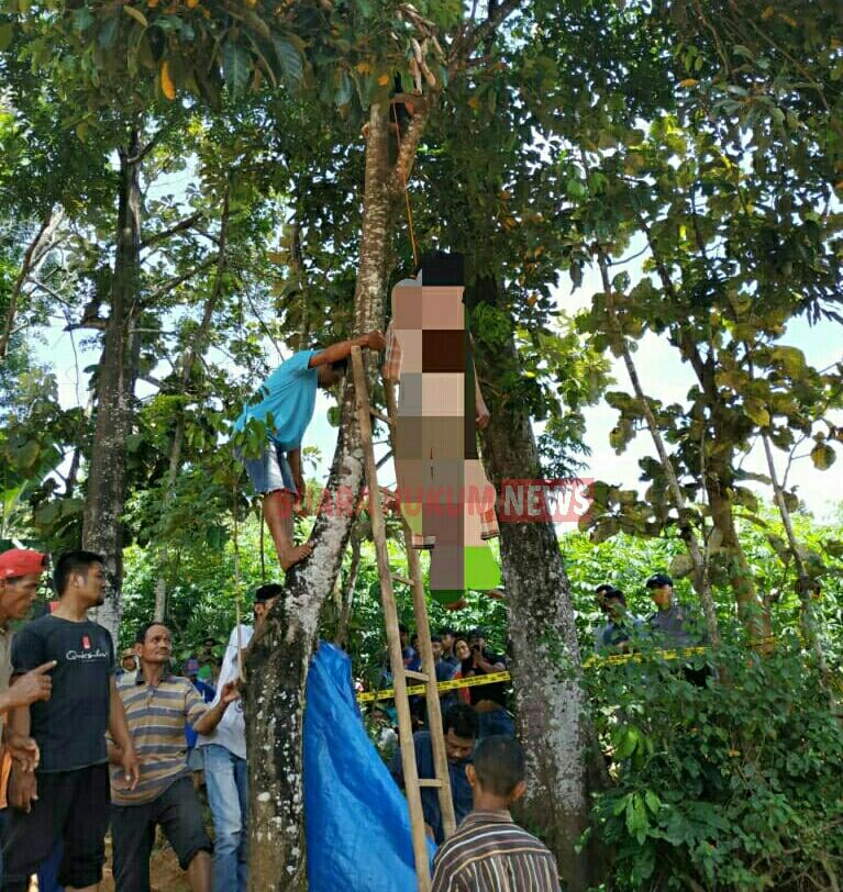 Seorang Warga Desa Tajungsari Di Temukan Gantung Diri Di Pohon Rambutan
