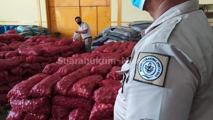 Diduga Tanpa Prosedur Resmi, 35 Ton Bawang Merah Yang Masuk Ke Tanah Air, Diamankan Petugas