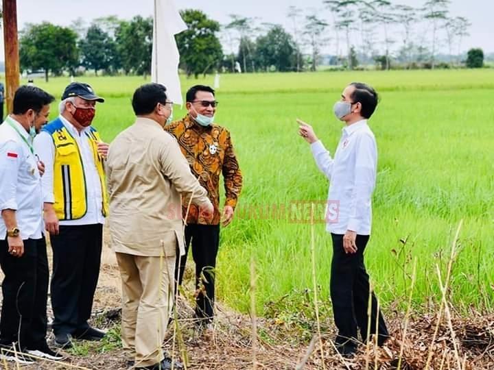 Didampingi Kabinet Indonesia Maju, Presiden Jokowi Tinjau Jaringan Reklamasi Rawa Di Pulang Pisau