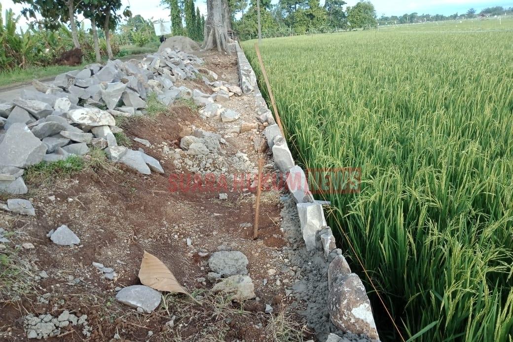Pembangunan Talud Desa Pangkalan Diduga Sarat Penyimpangan
