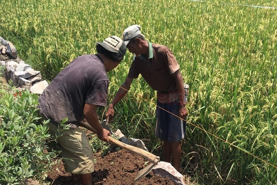 Pembangunan Talud Desa Pangkalan Diharapkan Mampu Tingkatkan Sarana InfrastrukturDesa