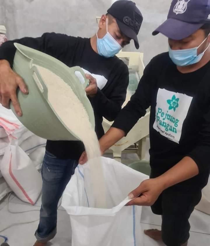 Proyek Upland di Magelang, Fokus untuk Padi Organik