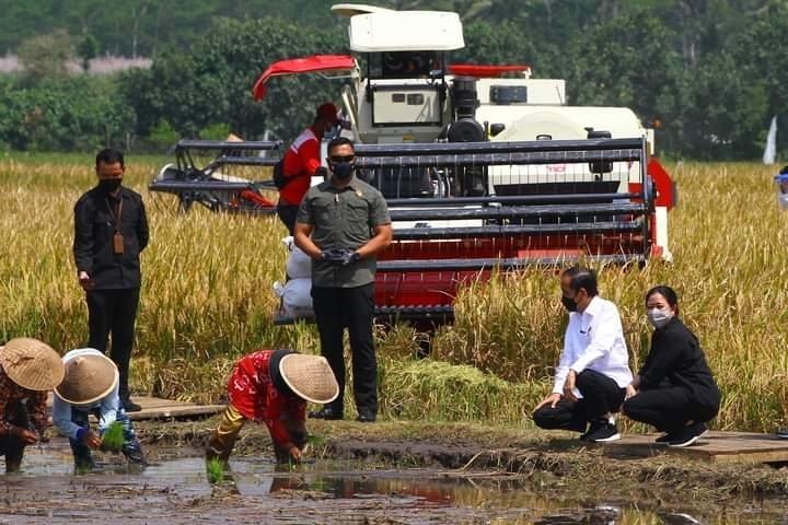Usai Ngobrol Bareng Petani, Puan Minta Pemerintah Pastikan Ketersediaan Pupuk